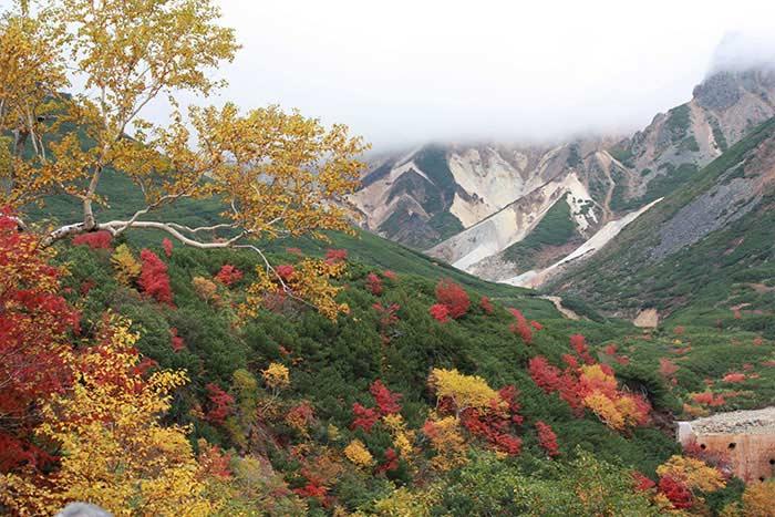 かみふらの八景・十勝岳温泉郷の写真