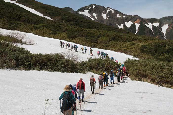 大雪山国立公園 十勝岳山開きの写真