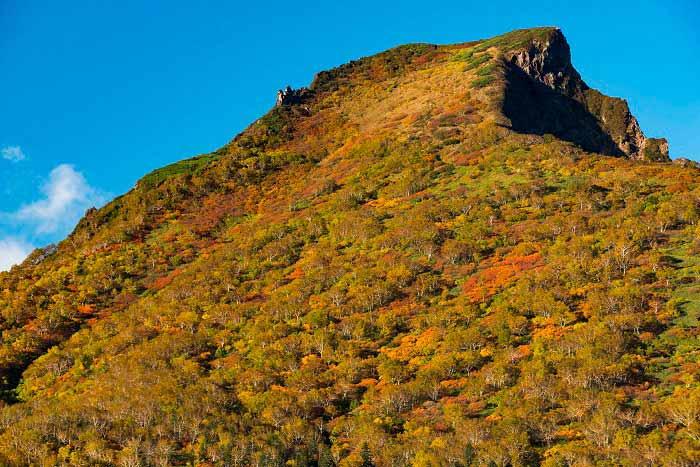 黒岳の紅葉・雲海の写真