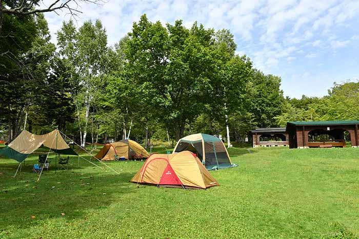 とうま山キャンプ場の写真1